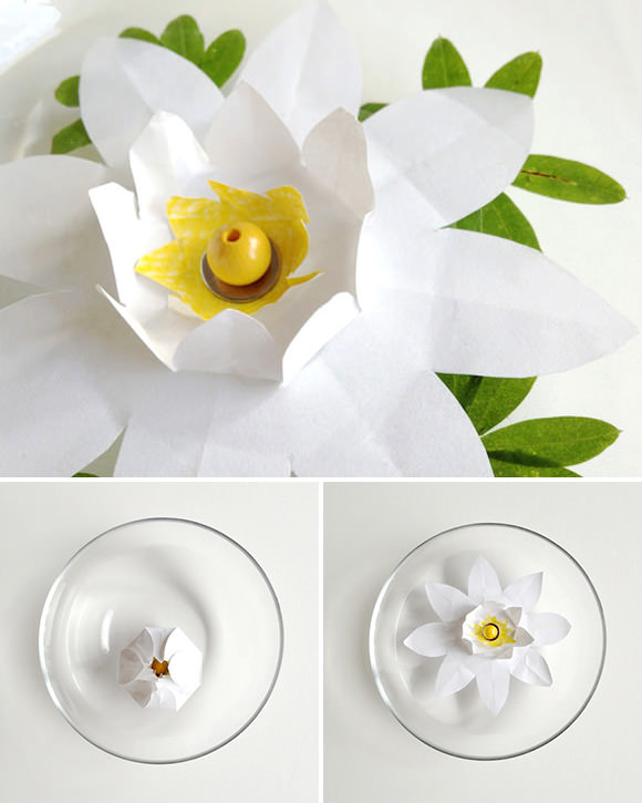 Drop this easy-to-make paper lily bud in a bowl of water and watch it slowly bloom before your eyes!