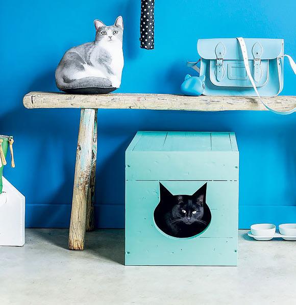 DIY Cat Box