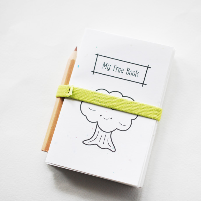 DIY Printable Observation Books