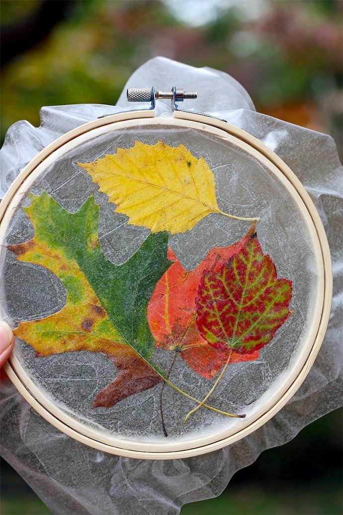 Fall Crafts for Kids: Leaf Suncatcher (via Buzzmills)