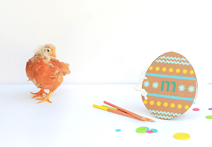 Make Your Own Easter Egg Doodle Book