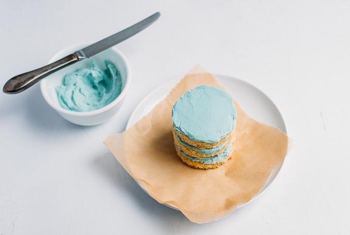 Robin's Egg Blue Mini Cakes Instructions
