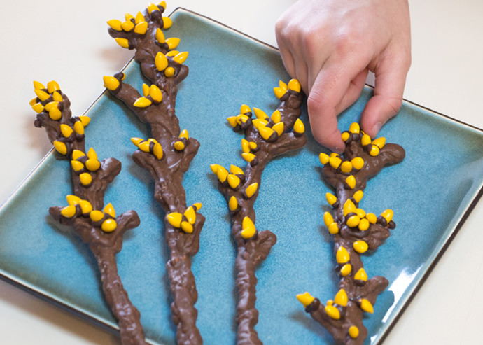 Simple Sweet & Salty Spring Branches Snack