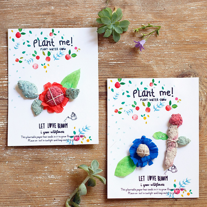 DIY Plantable Seed Paper Cards