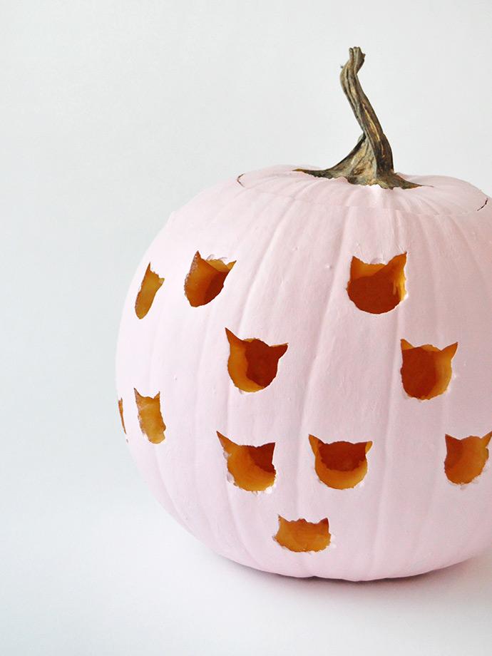 Diy Cat Drilled Pumpkins Handmade Charlotte