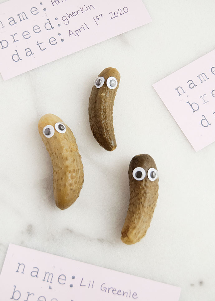Pickle Pets for April Fool's Day