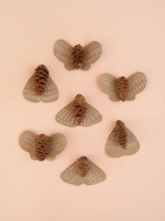 Pinecone Moths