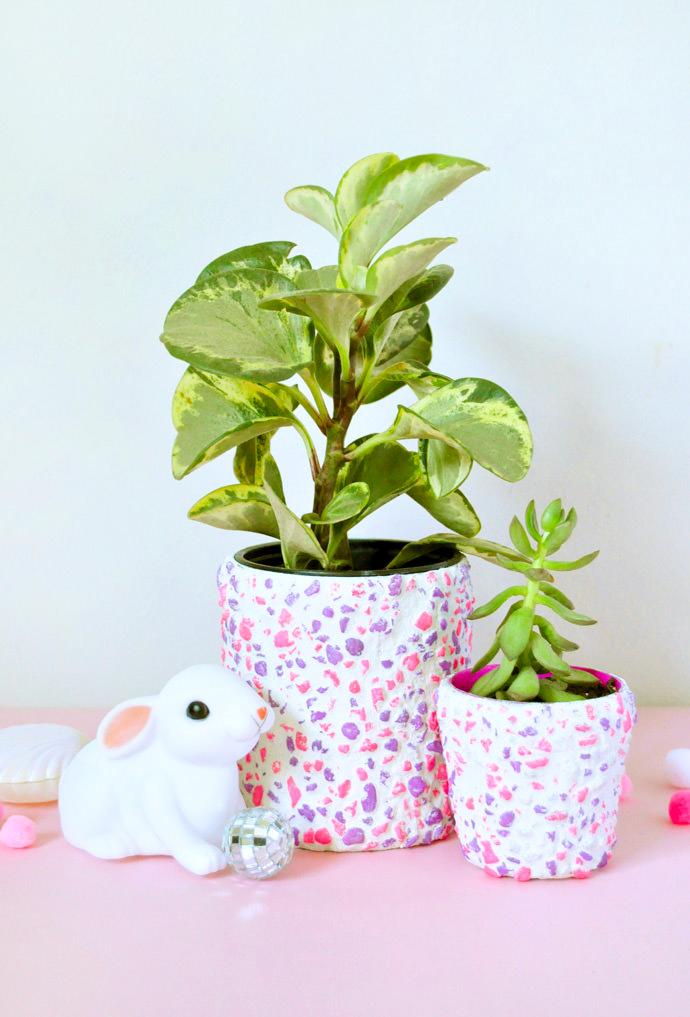 planters4